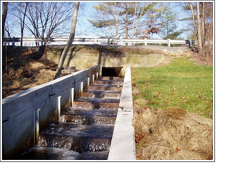 The Restored Island Creek Fish Run - Duxbury, Massachusetts